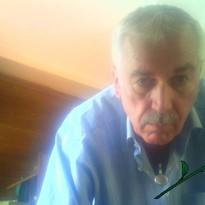 Profilbild von morchell