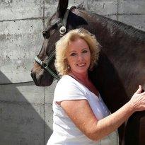 Profilbild von pferd09